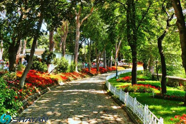 پارک بیکوز