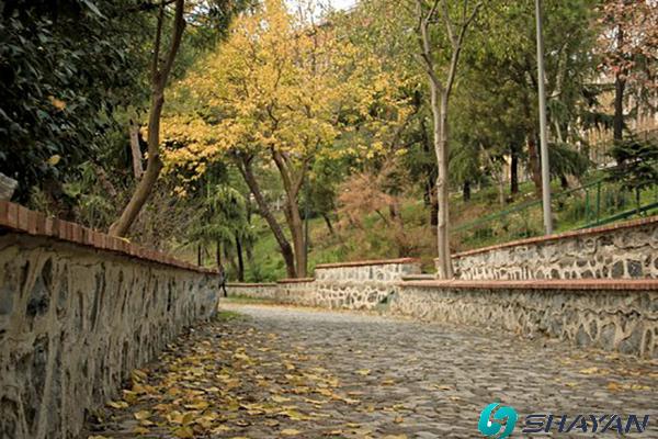 پارک کاما