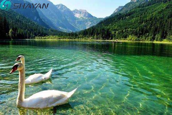 دریاچه ترکیه